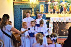 Z pielgrzymką u Mamy-Wąwolnica (17)